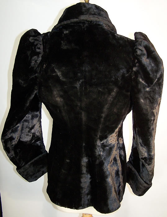 Victorian Plush Velvet Beaver Fur Winter Coat Jacket back view