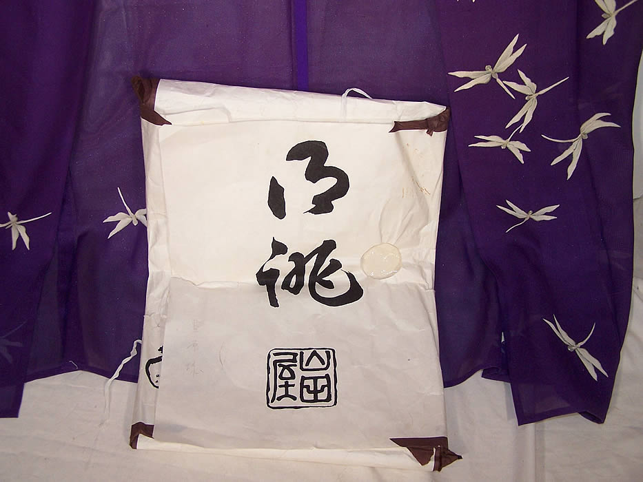 Japanese Geisha Sheer Silk Screen Dragonfly Plum Kimono Close up.