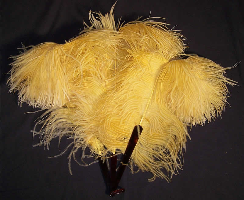 Edwardian Yellow Ostrich Feather Fan